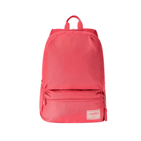 Morral-Dinamicon